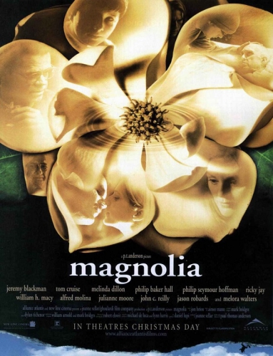 magnolia-2-cb6be.jpg